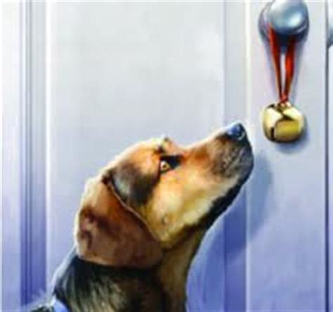how to to ring bell to go potty teaching your or puppy to ring a bell for more successful potty