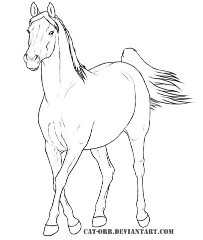 Arabian Coloring Pages Arabian Coloring Pages Coloring Pages