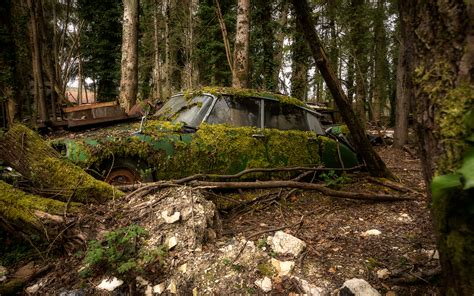 classic landscape wallpaper abandon deserted overgrowth classic car classic forest