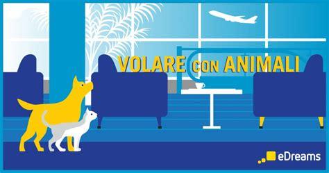 alitalia trasporto animali in cabina edreams in una guida tutte le regole per viaggi in aereo