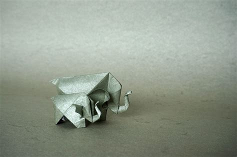 origami safari animals origami choice image craft decoration ideas
