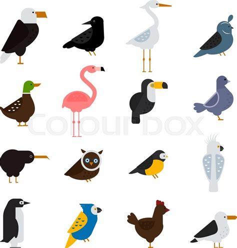 Birds Illustration birds vector set birds illustration egle and parrot