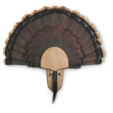 turkey fan mount kit walnut hollow oak turkey fan mounting kit 216387
