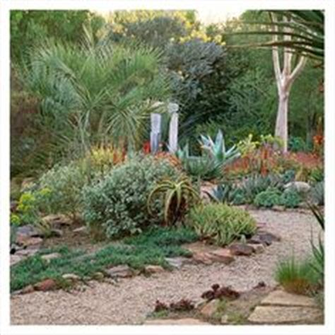 xeriscape dreams on pinterest landscaping drought