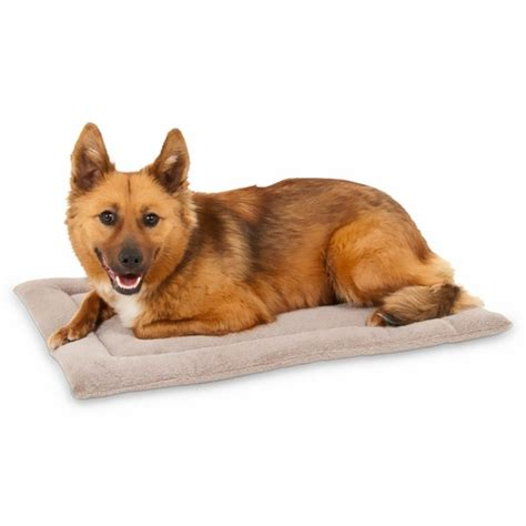 Petmate Kennel Mat by Petmate Kennel Mat 23 5 Quot X16 5 Quot 25 30 Lbs