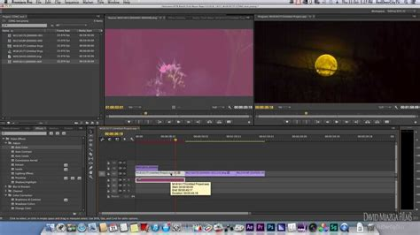 adobe premiere pro update adobe premiere pro 7 1 cc update with cdng support youtube