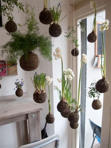 Indoor Hanging Garden Ideas Diy String Gardens Quot Kokedama Quot Gardens The Plant And Japanese