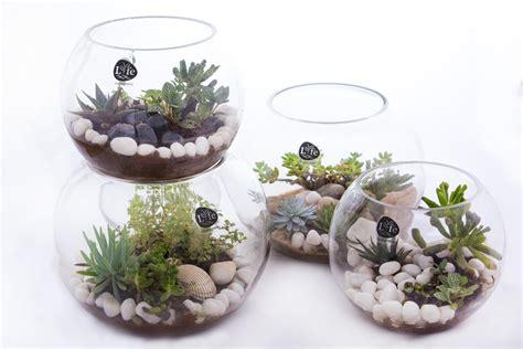 plant table uncategorized table plants englishsurvivalkit home design
