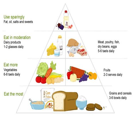 piramide alimentare cinese what food is eggs in recipes food