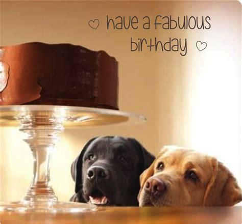 dog themed birthday ecards happy birthday cake dog labrador retriever cute