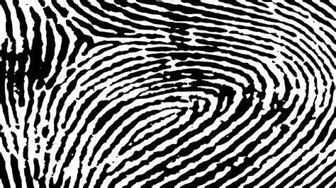 pattern of black and white black and white fingerprint pattern free stock photo