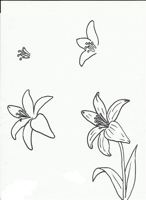 doodle flowers step by step 25 best ideas about draw flowers on