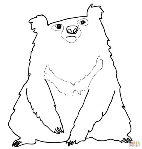 spectacled bear coloring page spectacled bear coloring download spectacled bear coloring