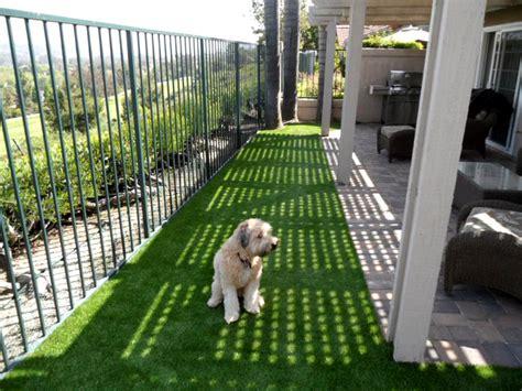 dog runners for backyards dog runs for sale cat kennel kildare cat kennel kildare
