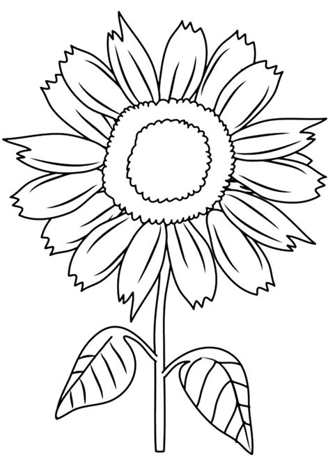 Sunny Smile Sunflower Coloring Page - Free Printable