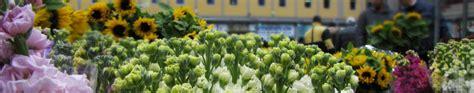 mercato dei fiori terlizzi comune di terlizzi sito istituzionale