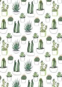 Cacti amp succulents by vicky webb