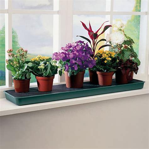 Plant Tray Windowsill self watering windowsill plant tray gardening trays greenhouse megastore