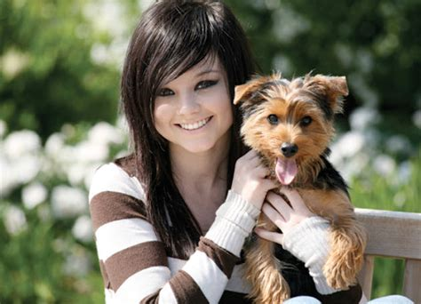 yorkie kidney failure symptoms learn about the terrier breed from a trusted veterinarian