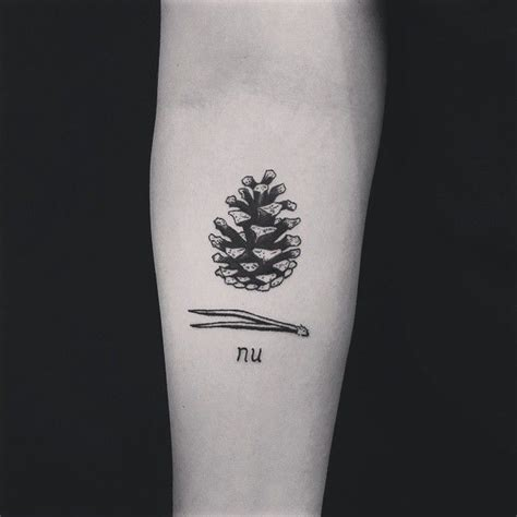 pine cone tattoo 25 best ideas about pine on pine tree