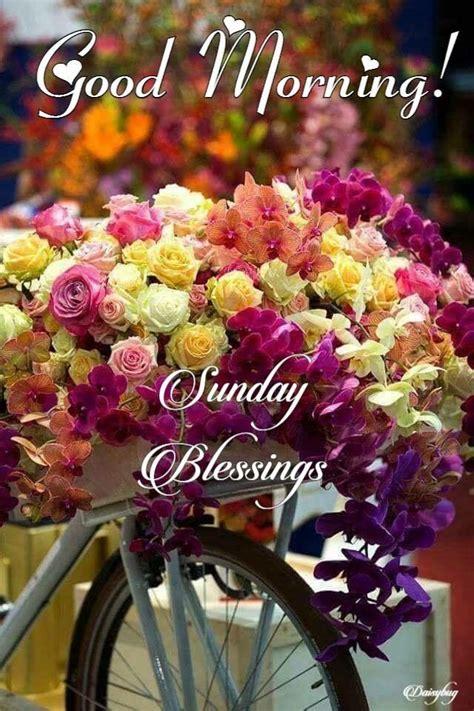 sunday images 626 best sunday images on buen dia