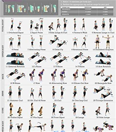 weight bench exercise chart weight bench exercises chart 28 images bench press workout sheet weight lifting
