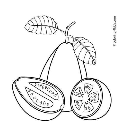coloring pages food and drink 500 best images about food drink and cooking coloring