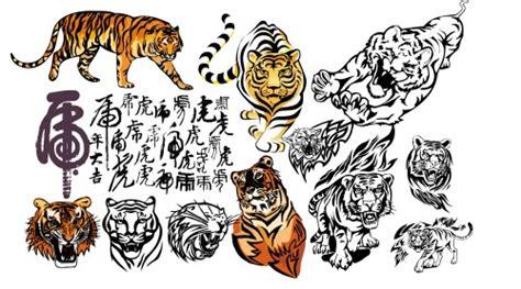 tiger pattern brush photoshop photoshop brushes graphics tiger tatoo vector