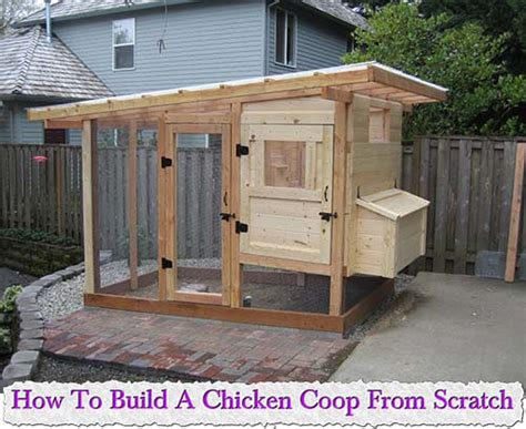 small chicken coop tell a how to build a chicken coop ebook