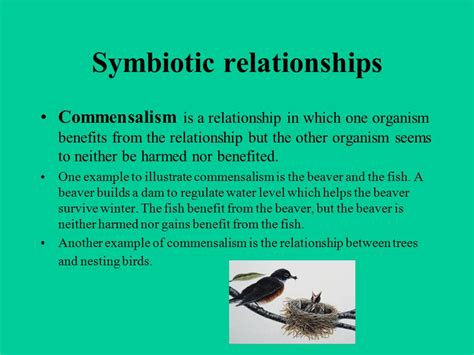 definition of commensalism biology picture and images