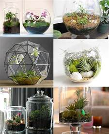 diy terrariums diy and tutorial links rags to couture