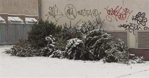 weihnachtsbaum entsorgen dresden 28 images weihnachtsb