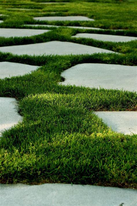 grass  concrete garden paving garden paths