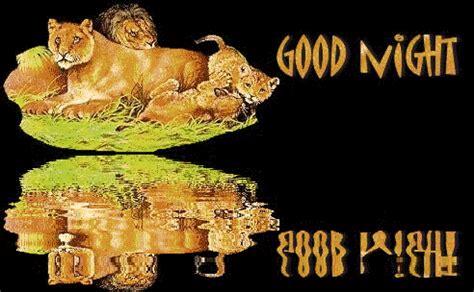 Motorrad Spr Che Dog Tag by Boa Noite Imagens Animadas Gifs Animados Anima 231 245 Es