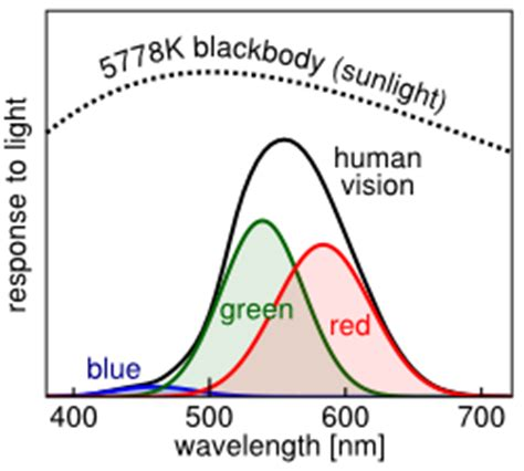how many colors can the human eye distinguish viruses no color