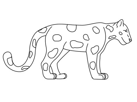 rainforest animal templates jaguar animal coloring pages realistic coloring pages