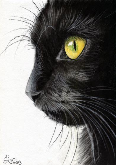 black cat painting designs best 25 black cat drawing ideas on