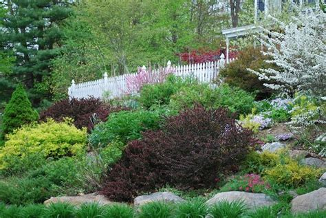 landscaping ideas for slopes slope landscape like the bigger plants hillside landscape