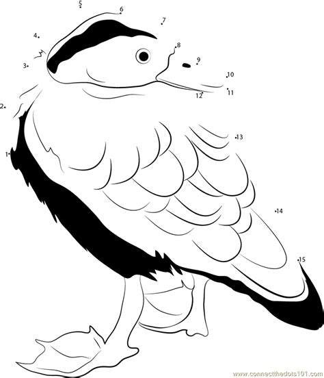 duck call coloring page duck call free coloring pages