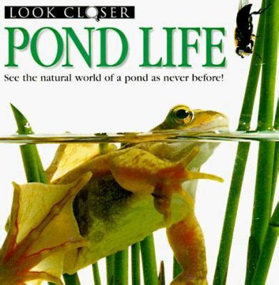 pond books pond by barbara deni bown frank greenaway