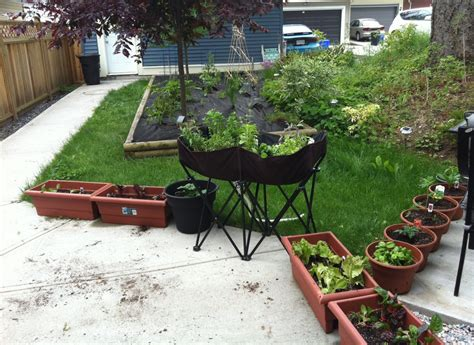 container gardening vegetables and herbs container gardening vegetables and herbs interesting