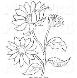 black and white coloring pages of flowers free printable black art clip art of a coloring page of