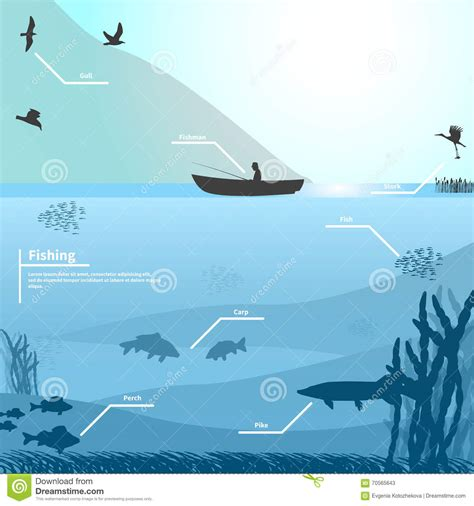 lake boats to fish fisherman on the boat fishes on the lake stock vector