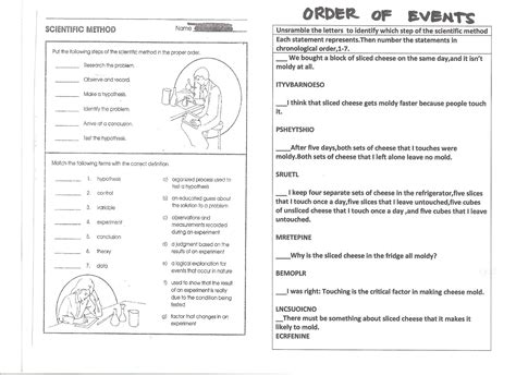 8th Grade Health Homework by Science Homework Worksheet Science Best Free Printable