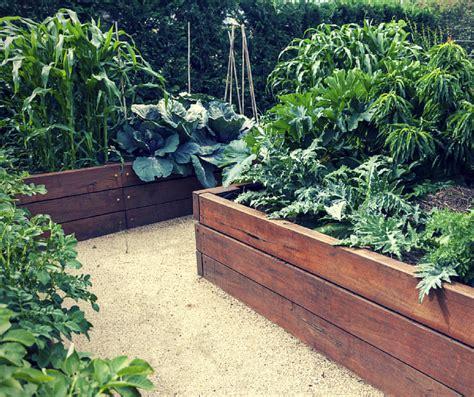 advantages of raised garden beds advantages of raised garden beds a better driveway