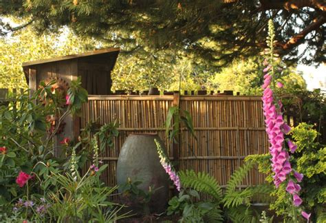 amazing bamboo fence ideas  beautify  outdoors