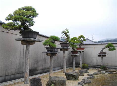 tuin simulator kiyoshi hiramatsu hiramatsu seijuen bonsai garden