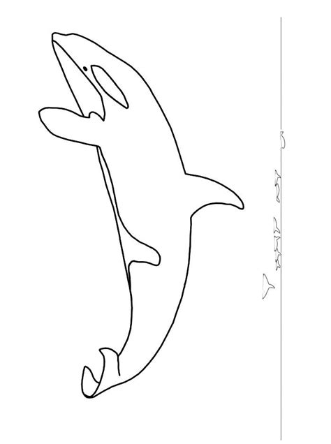 killer whale coloring page az coloring pages