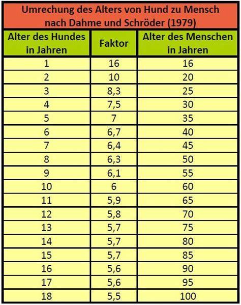 katzenjahre in menschenjahre tabelle hundejahre und menschenjahre wie wird das umgerechnet