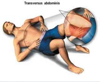 how to properly engage your transverse abdominis